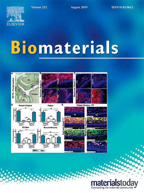 Functionalized polymer microbubbles to target thrombus