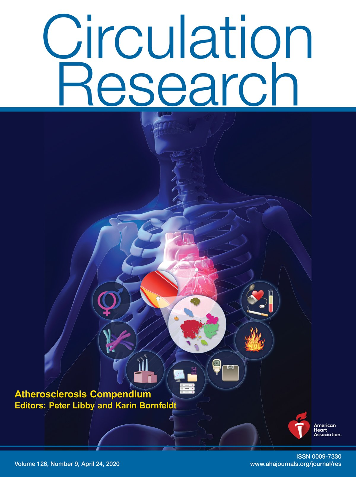 CD31 as a Therapeutic Target in Atherosclerosis