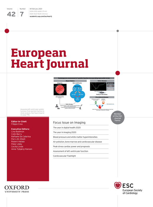 Coronary stent CD31-mimetic coating